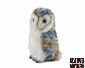 Living Nature Barn Owl