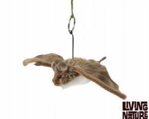 Living Nature Bat